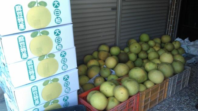 麻豆大白柚